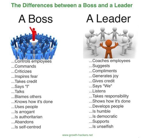 boss viz leader