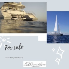 catamaran-for-sale